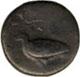 didramma - 510-472 a.C.
