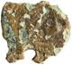 AE4 - 383-403 d.C.383-403 d.C. e oltre
