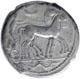 tetradramma - 466-460 a.C.